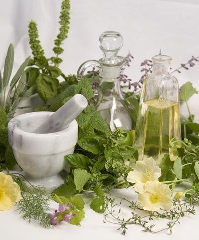 Gyógyító_növények_kurzus.jpg
