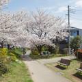 Nyolcszögletű ház cseresznyefával