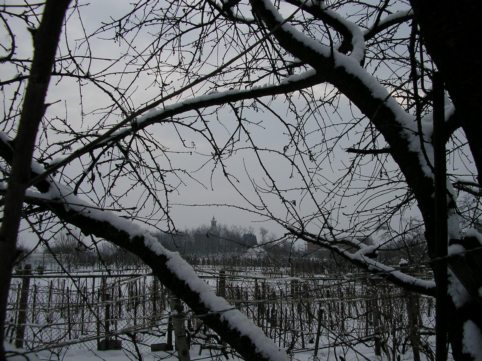 Havas kert.jpg