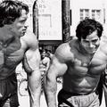 Edzés egy edzőtárssal. Előnyök és hátrányok