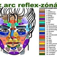 Az arc reflex zónái