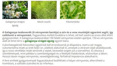 Galagonya teakeverék (A vérnyomás barátja)