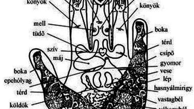 Akupresszúrás pontok a tenyérben és ujjakon