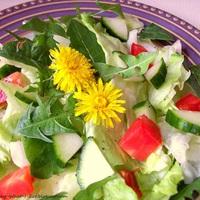 Rukkola saláta, köznyelven gyermekláncfű vagy pitypang saláta recept