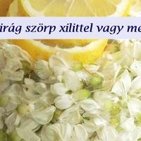 Diétás Akácvirág Szörp Recept
