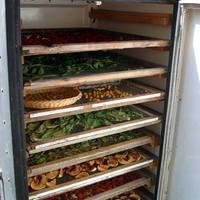 Gyümölcsaszaló házilag, egy kifuserált hűtőszekrényből