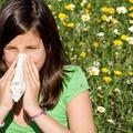 10 házi segítség allergia ellen