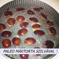 Paleo mákos torta szilvával - Minden Mentes