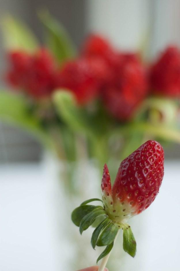 Anyáknapi rózsa eperből vagva3.jpg
