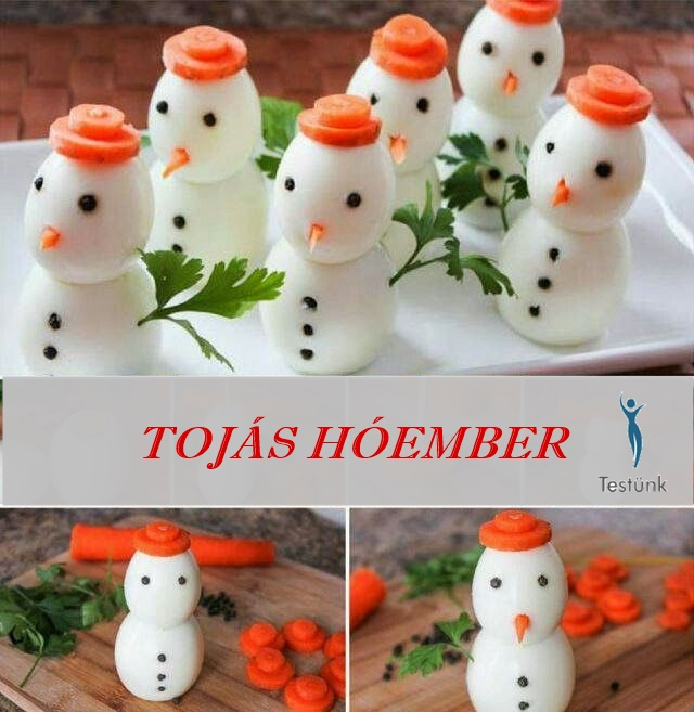 tojas_hoember_e2.jpg