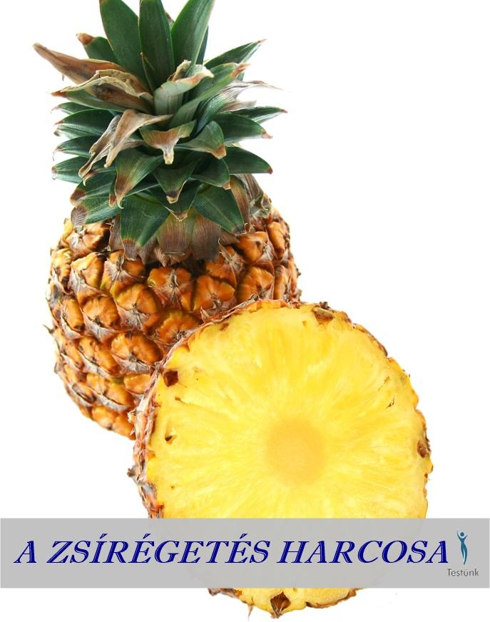 ananasz_a_zsiregetes_harcosa.jpg