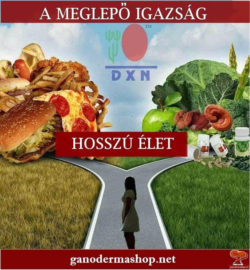 dxn_valaszut-ganodermashop_net_a_meglepo_igazsag_hosszu_elet.jpg
