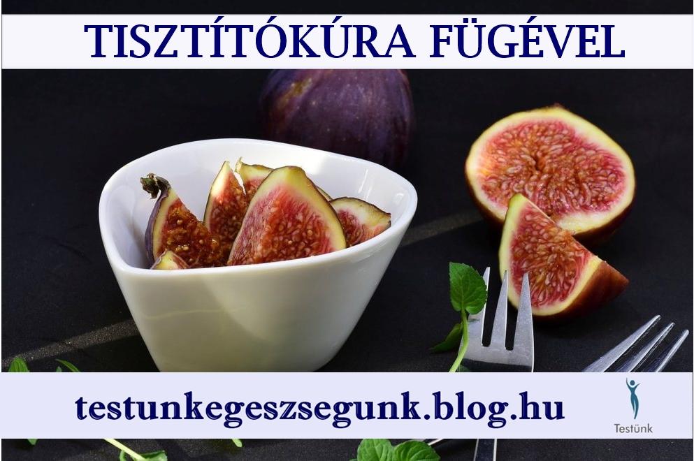 fuge_tisztitokura_fugevel.jpg