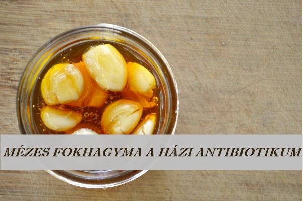 mezes_fokhagyma_a_hazi_antibiotikum_recept.jpg