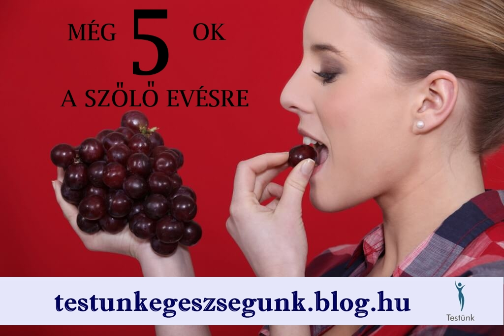 szolo_dieta_5_ok_a_szolo_evesre.jpg