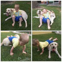 Patrik és Lili #kenyerespatrik #labrador #family
