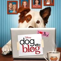 Az eb és a web: Vadonatúj élőszereplős komédia a Disney Csatornán