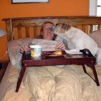 Tévhit #59: Az ágyba vitt reggeli idilli