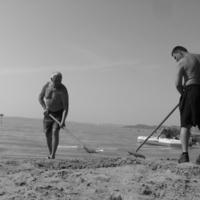 homokvárrontók