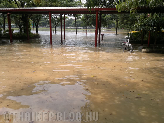 flood01b_1350376891.jpg_560x420