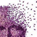 Demencia, a kötsög