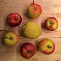 Az alma nem esett messze a fájától