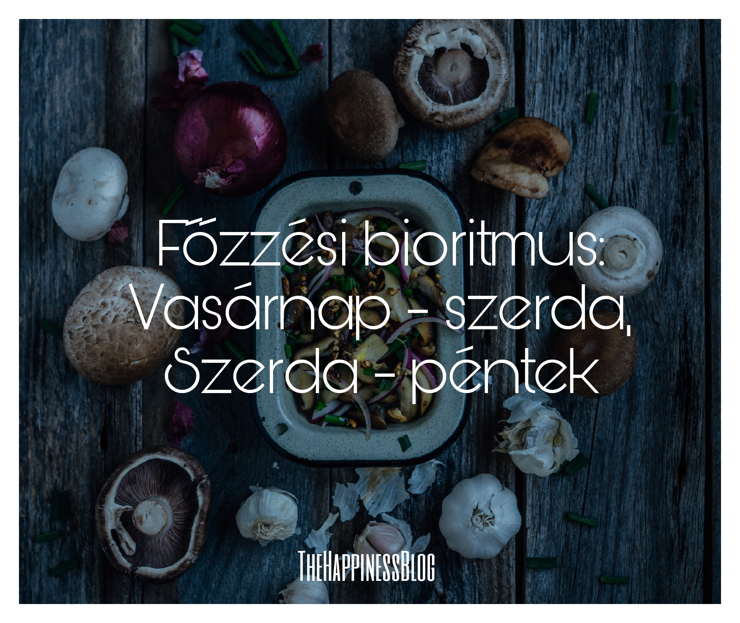 fozesibioritmus_thehappinessbloghun.jpg