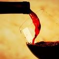 A sommelier...............
