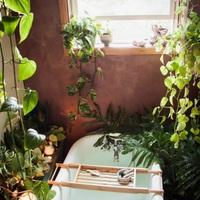 Zöldül a fürdőszobánk