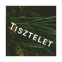 19. nap - TISZTELET