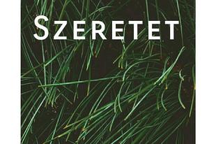 20. nap - SZERETET