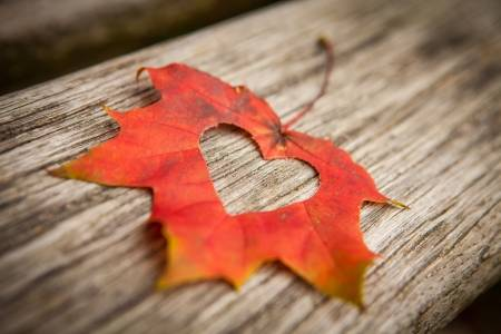16158812-a-heart-in-an-autumn-leaf-on-a-background-of-grained-wood-.jpg