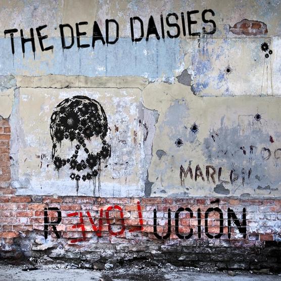 dead_daisies.jpg