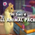 The Sims 4: Small Animal Package mod - Játékteszt