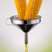 Kukoricaszirup vs Glükózszirup
