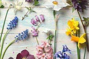 Itt a tavasz! 9 teendő a lakásban