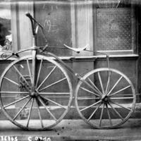 A szexi velocipéd