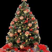 Kellemes Karácsonyi Ünnepeket és Boldog Új Évet kívánok !