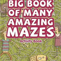 Big Book Of Many Amazing Mazes Activity Book Books Pdf File