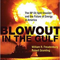 ??PDF?? Blowout In The Gulf: The BP Oil Spill Disaster And The Future Of Energy In America (MIT Press). PALOS power websites Centros Lokeren Inicio