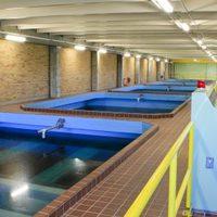 Fizikai víztisztító készülékek