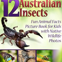|TOP| 12 Australian Insects! Kids Book About Insects: Fun Animal Facts Picture Book For Kids With Native Wildlife Photos (Kid's Aussie Flora And Fauna Series 4). mashups charts Report donde downtown