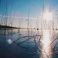 12 kép a befagyott Balatonról napnyugtakor