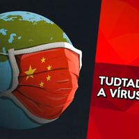 Így működnek a vírusok - 10 érdekesség a vírusokról