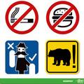 A villamoson medvével utazás szabályai