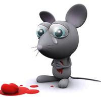 A világ legszerencsétlenebb egere