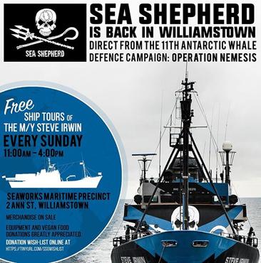 sea_shepherd.jpg