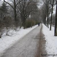 FKF. Zrt. a téli sportok elkötelezett támogatója