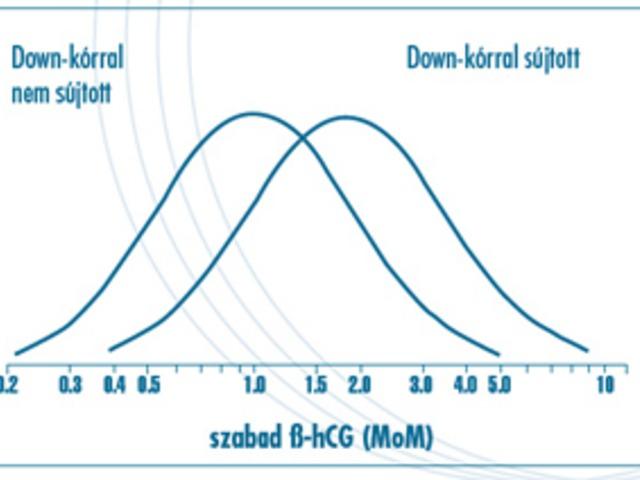47. Minden magas szabad béta-hCG-s magzat Downos, de nem minden Downos magas szabad béta-hCG-s?