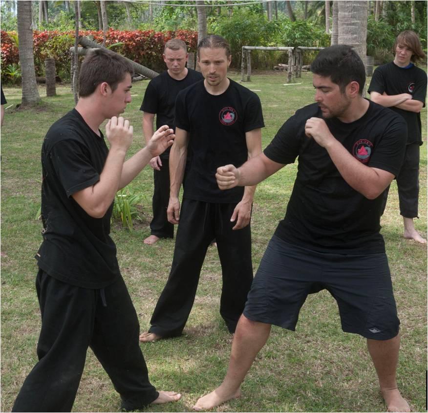 martial_arts_training_vagott.jpg
